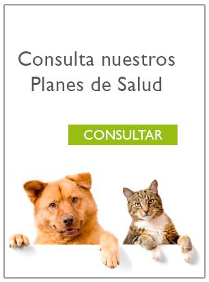 Consultar planes
