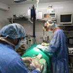quirofano veterinaria cadiz